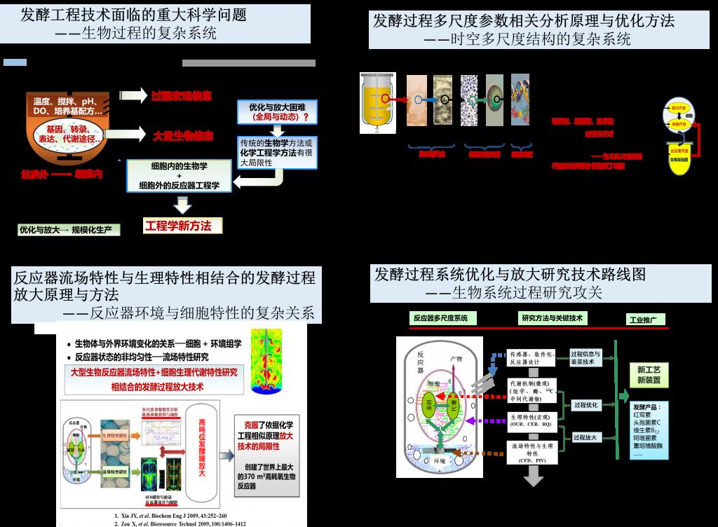 微生物发酵过程优化