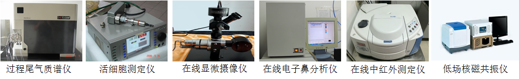 过程检测与控制技术开发与应用