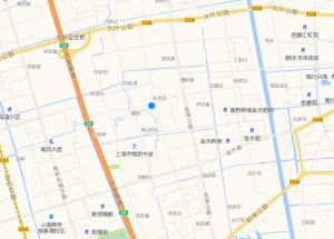 上海市奉贤区茂园路605号